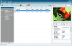 Any Video Converter Free 6.0.7